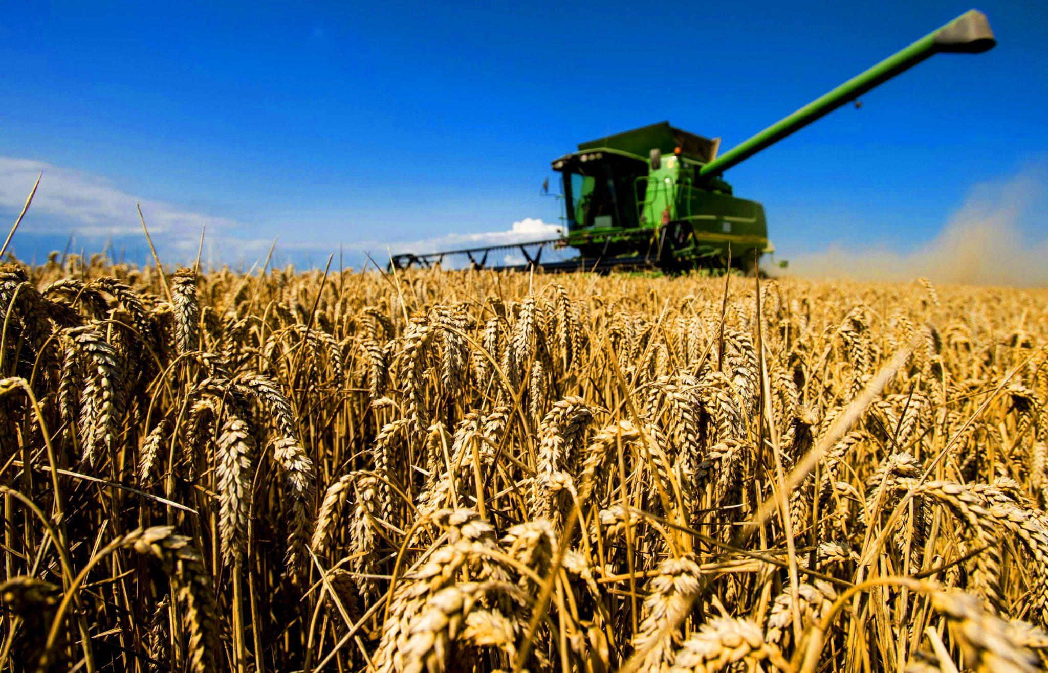 Картинки с сельским хозяйством